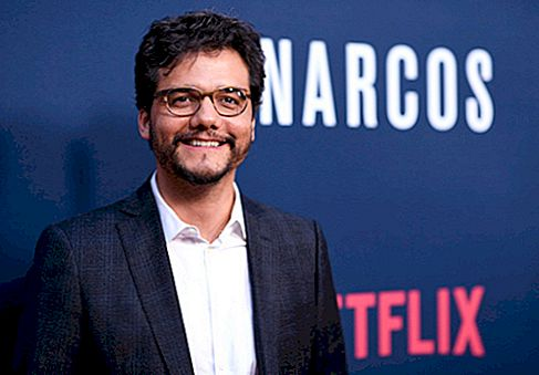 Wagner Moura Net Worth
