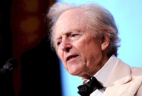 Artigo: Tom Wolfe Net Worth