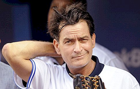Charlie Sheen er $ 200 Million Anger Management Gamble