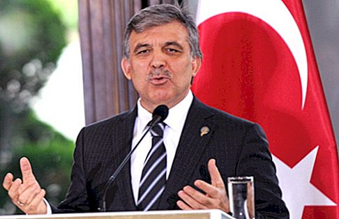 Abdullah Gül Net Worth
