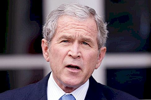 Fortuna de George W. Bush