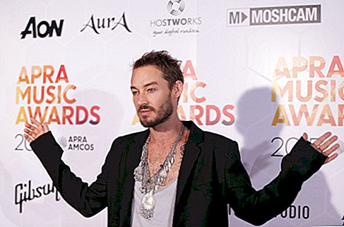 Daniel Johns Net Worth