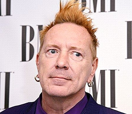 John Lydon別名Johnny Rotten Net Worth