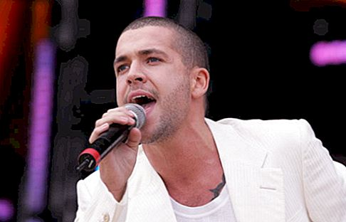 Shayne Ward Net Worth