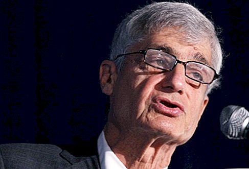 Robert Rubin Net Worth